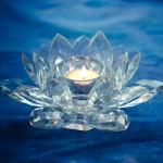 Reiki - Reiki Healing - Reiki Melbourne - IAM Reiki -Lotus